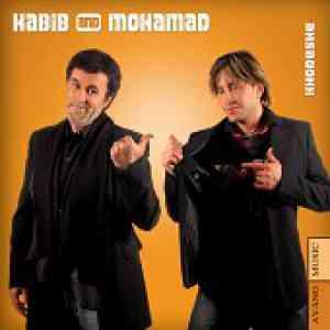 دانلود آهنگ مرد تنهای شب کلوپ میکس (حبیب) حبيب