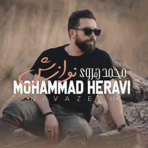 دانلود آهنگ محمد هروی  به نام نوازش